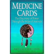 Medicine Cards: The Discovery of Power Through the Ways of Animals [With Cards], Hardcover (9780312204914)