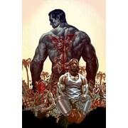 Suiciders, Volume 1, Hardcover (9781401248970)