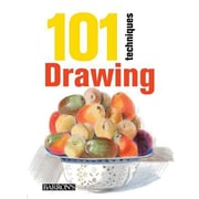 101 Techniques: Drawing, Paperback (9781438005478)