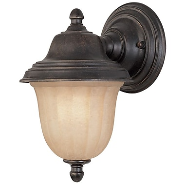 Dolan Designs Helena 1-Light Outdoor Sconce