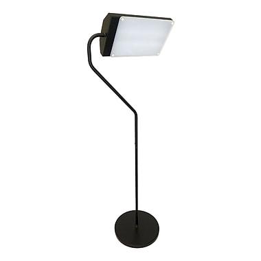 Northern Light Flamingo Therapeutic 48'' Task Floor Lamp