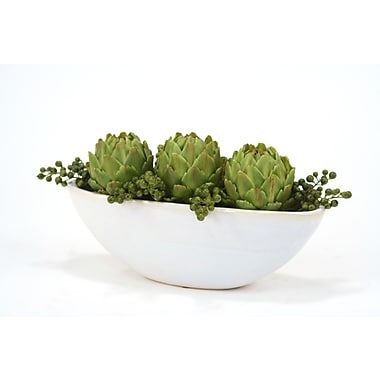 Distinctive Designs Berries and Artichokes Desktop Succulent Plant in Planter