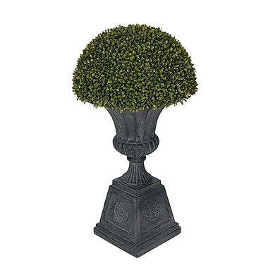 House of Silk Flowers Artificial Boxwood Half Ball Topiary in Urn; Black