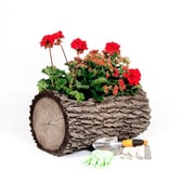 Surreal Real Plastic Pot Planter; Medium