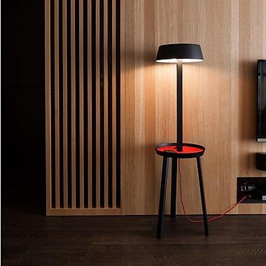 SeedDesign Carry 55.1'' Floor Lamp; Black