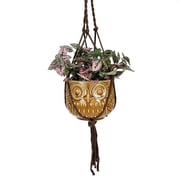 Coynes Nature's Garden Novelty Owl Pot Planter