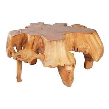 Zuo Modern Broll Coffee Table (WC404232)