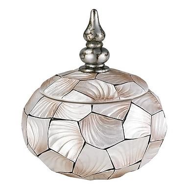 OK Lighting Conch Shell Round Box