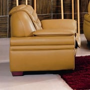Hokku Designs Westminster Leather Club Chair