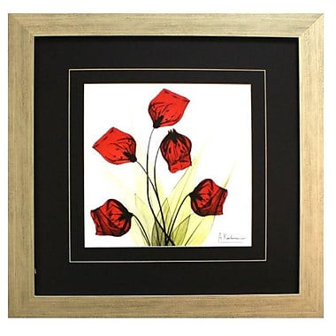 Pictures and Mirrors 'X-Ray Sandersonia Bunch in Red' by Albert Koetsier Framed Painting Print