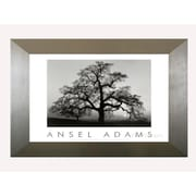 Pictures and Mirrors 'Oak Tree' by Ansel Adams Framed Photographic Print