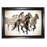 Pictures and Mirrors Wild Horses Framed Wall Art