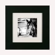 Pictures and Mirrors Horse and Halter Framed Photographic Print