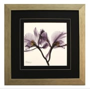 Pictures and Mirrors Cute Trio Framed Wall Art