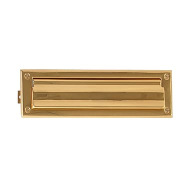 BRASS Accents 13 in x 3.5 in Brass Mail Slot; PVD Polished Brass