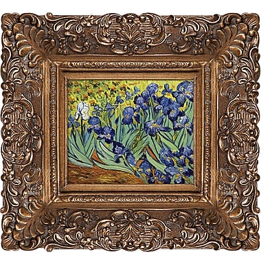 Tori Home Irises by Vincent Van Gogh Framed Painting Print