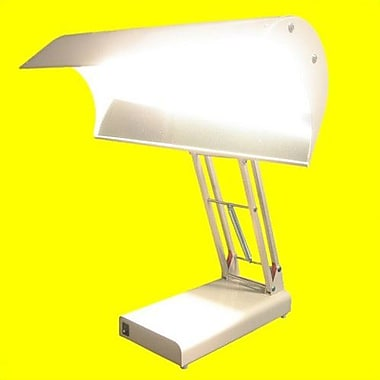 Northern Light SADelite 19'' Table Lamp