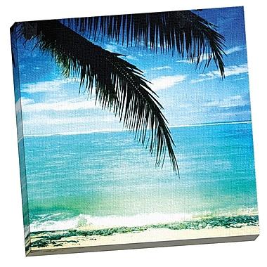 Portfolio Canvas Rarotonga Palm by Mimi Payne Photographic Print on Wrapped Canvas