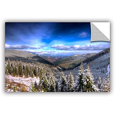 ArtWall 'Winter Vision' by Dragos Dumitrascu Photographic Print; 32'' H x 48'' W x 0.1'' D