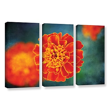 ArtWall 'One In Orange' by Dragos Dumitrascu 3 Piece Photographic Print on Wrapped Canvas Set