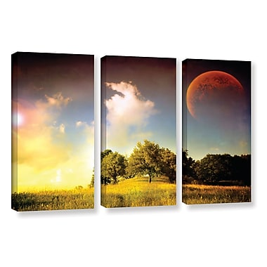 ArtWall 'Everlasting Season' by Dragos Dumitrascu 3 Piece Photographic Print on Wrapped Canvas Set