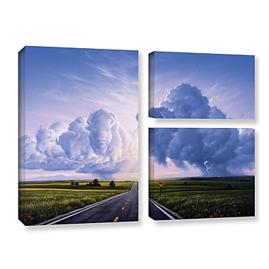 ArtWall 'Buffalo Crossing' by Jerry Lofaro 3 Piece Graphic Art on Wrapped Canvas Set
