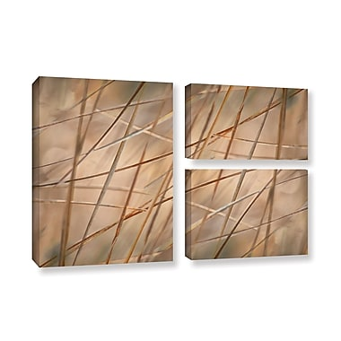 ArtWall 'Deschampsia' by Cora Niele 3 Piece Photographic Print on Wrapped Canvas Set