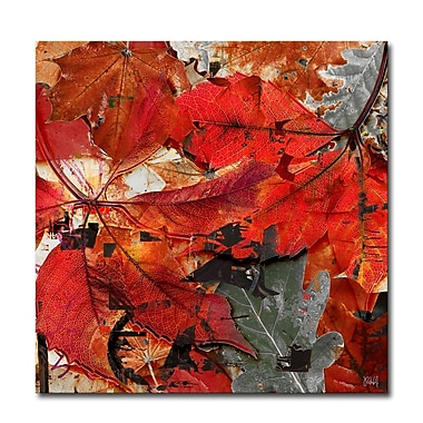 Ready2hangart Fall Ink XIX Framed Graphic Art on Wrapped Canvas; 30'' H x 30'' W x 1.5'' D