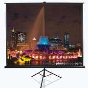 Elite Screens Tripod Series White Portable Projection Screen; 119'' Diagonal 1:1