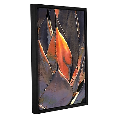 ArtWall 'Agave Sunset' by Linda Parker Framed Photographic Print on Wrapped Canvas; 24'' H x 16'' W