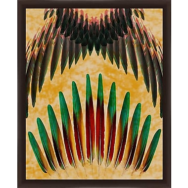 PTM Images 'Feathers Forever' Framed Graphic Art