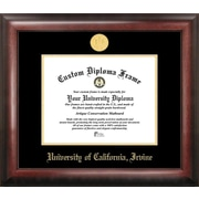 Campus Images NCAA Gold Embossed Diploma Picture Frame; UC Irvine Anteaters