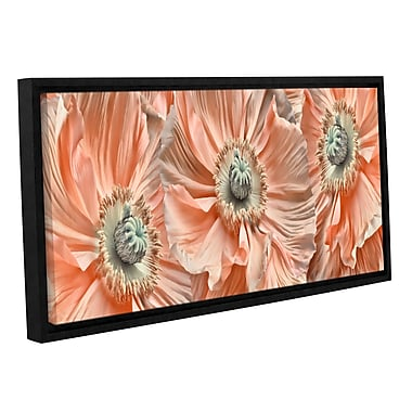 ArtWall 'Poppyscape' by Cora Niele Framed Photographic Print on Wrapped Canvas; 12'' H x 24'' W