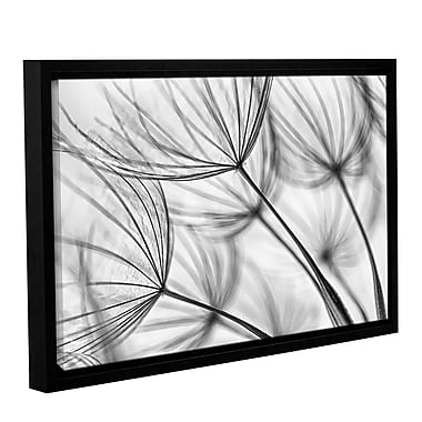 ArtWall 'Parachute Seed I' by Cora Niele Framed Graphic Print on Wrapped Canvas; 16'' H x 24'' W