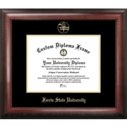 Campus Images NCAA Gold Embossed Diploma Picture Frame; Ferris State Bulldogs