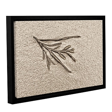 ArtWall 'Beach Find III' by Cora Niele Framed Graphic Art on Wrapped Canvas; 32'' H x 48'' W