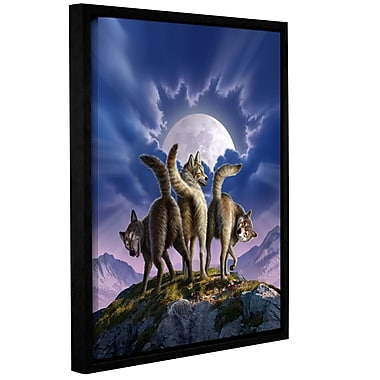 ArtWall 'Full Moon' by Jerry Lofaro Framed Photographic Print on Wrapped Canvas; 18'' H x 14'' W