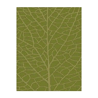 lava Green/Natural Indoor/Outdoor Area Rug; Rectangle 3'7'' x 5'7''