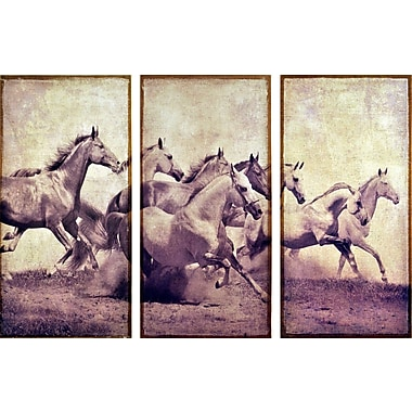 Empire Art Direct ''Stampeding Herd'' 3 Piece Photographic Print on Canvas Set