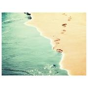 My Wonderful Walls Beach Photograph Wall Decal; Small