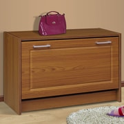 4D Concepts Single 12-Pair Shoe Storage Cabinet; Oak