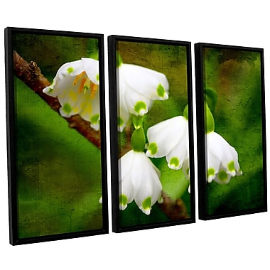 ArtWall 'Spring Reunion' by Dragos Dumitrascu 3 Piece Framed Photographic Print on Canvas Set