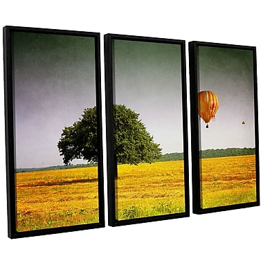 ArtWall 'Wings of October' by Dragos Dumitrascu 3 Piece Framed Photographic Print on Canvas Set