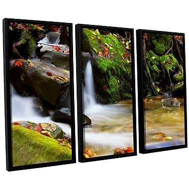 ArtWall 'Timeless Forest' by Dragos Dumitrascu 3 Piece Framed Photographic Print on Canvas Set
