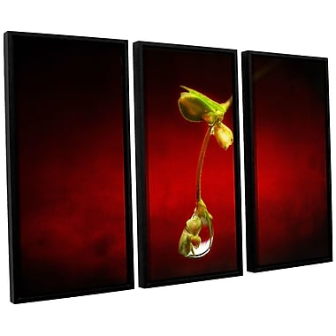 ArtWall 'Tears In The Rain' by Dragos Dumitrascu 3 Piece Framed Photographic Print on Canvas Set