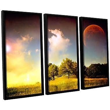 ArtWall 'Everlasting Season' by Dragos Dumitrascu 3 Piece Framed Photographic Print on Canvas Set