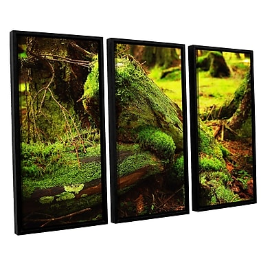 ArtWall 'Into The Greens' by Dragos Dumitrascu 3 Piece Framed Photographic Print on Canvas Set