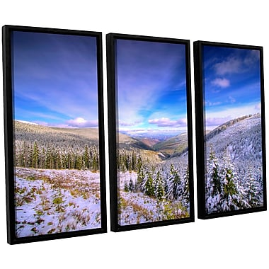 ArtWall 'Winter Lands II' by Dragos Dumitrascu 3 Piece Framed Photographic Print on Canvas Set