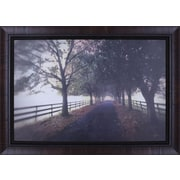 30'' H x 42'' W Ready to Hang 'Country Road' by P.T. Turk Matte Photograhy Framed Wall Art