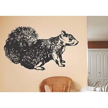 Design With Vinyl Squirrel Wall Decal
